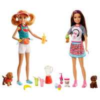 Barbie Sisters Assortment