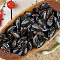 Organic Bouchot Mussels 700g