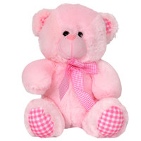 Cuddles Bear Checks Sm 26Cm