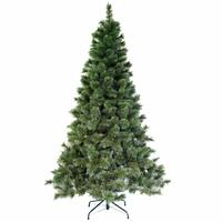 Christmas Tree - Frosted Needles Pine Tree 210Cm N20