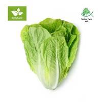 Organic romaine lettuce 200 g