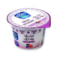 Nadec greek yoghurt mix berry 160 g