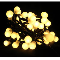 Indoor Hv Berry Light Chain  60Ww Led 2,95M Steady N23
