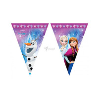 Disney Flag Banner Frozen Northern