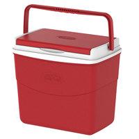 Keepcold Picnic Icebox 10L