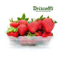 Strawberry imported - pack 500 g
