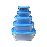 Duralex Square Bowls With Blue 5 Pieces