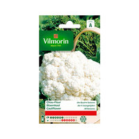 Vilmorin Chou-fleur Merv 4 Season 862
