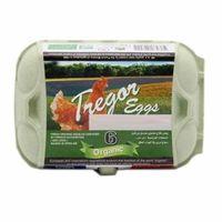 Tregor Organic Medium Eggs x6