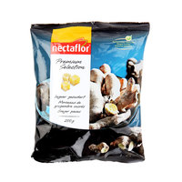 Nectaflor Premium Selection Ginger Pieces 200g
