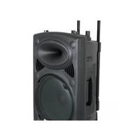 """Acoustic Trolley Speaker 10"""" 2 Mic AS10DU Black"""