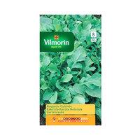 Vilmorin Roquette Cultivee 825