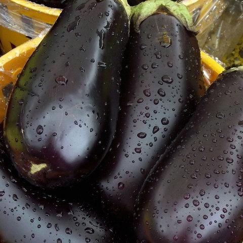Local-Eggplant