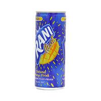 راني عصير بنكهة المانجو مع الحبيبات 240 مل