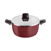 Tefal Pleasure Stewpot With Lid 24CM