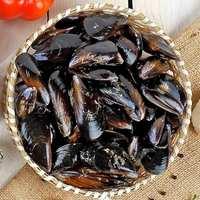 Organic Mussels 1Kg