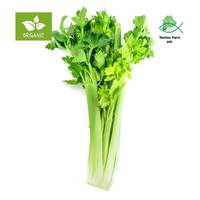 Organic celery - bag 200 g