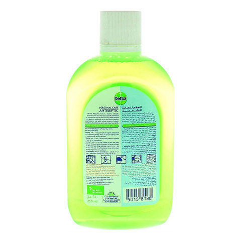 Dettol-Anti-Bacterial-Personal-Care-Antiseptic-250ml