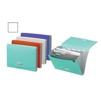 Foldermate Expanding file 13 poket A4 (Randomly Assorted)