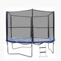 Trampoline 8Ft With Ladder ( Delivered In 7 Business Days )