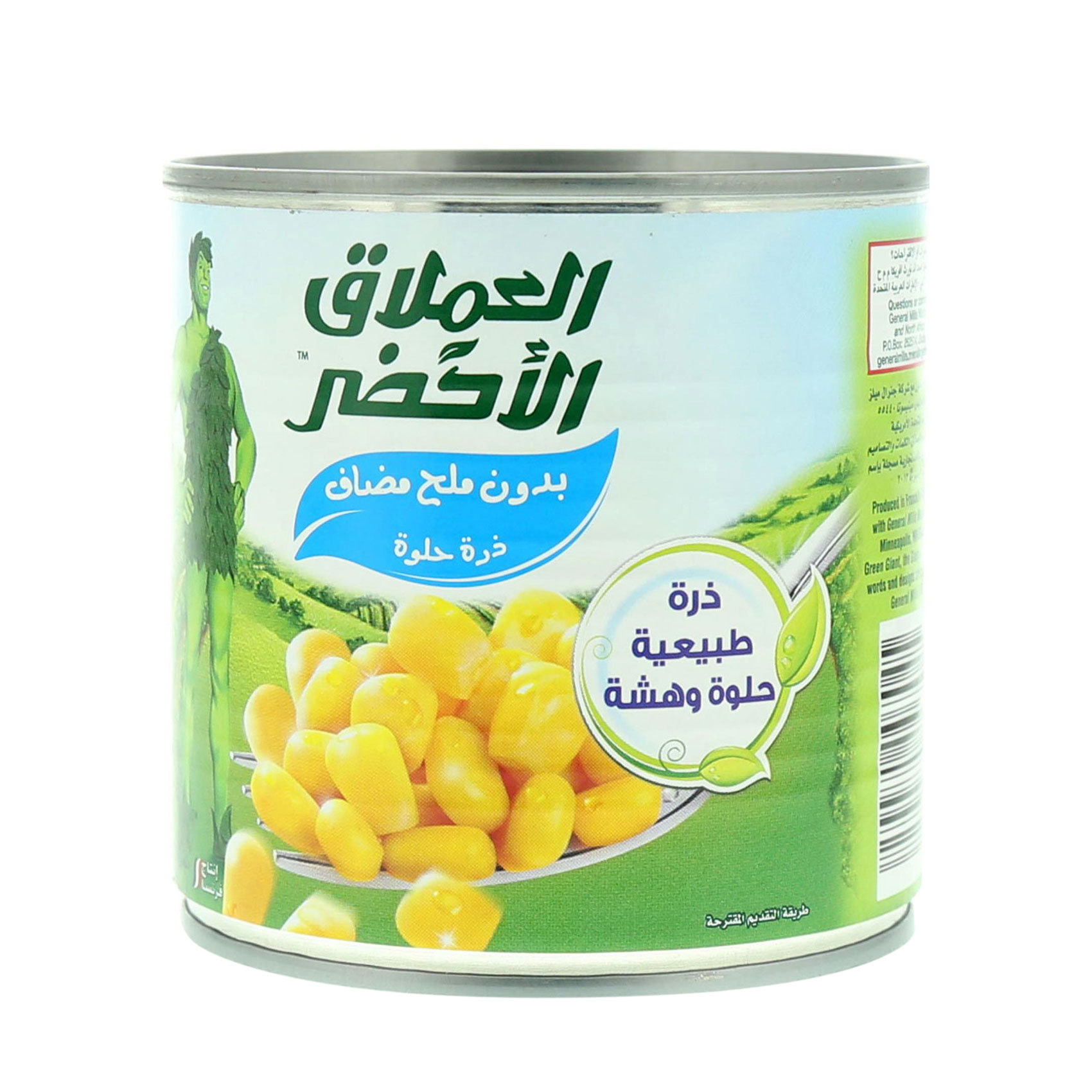 GREEN GIANT NIBLET CORN NO SALT340G