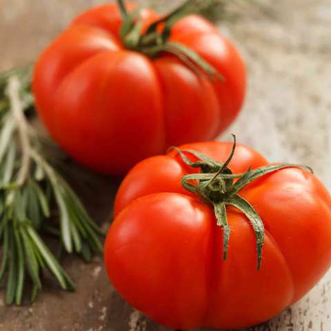 Beef-Tomato