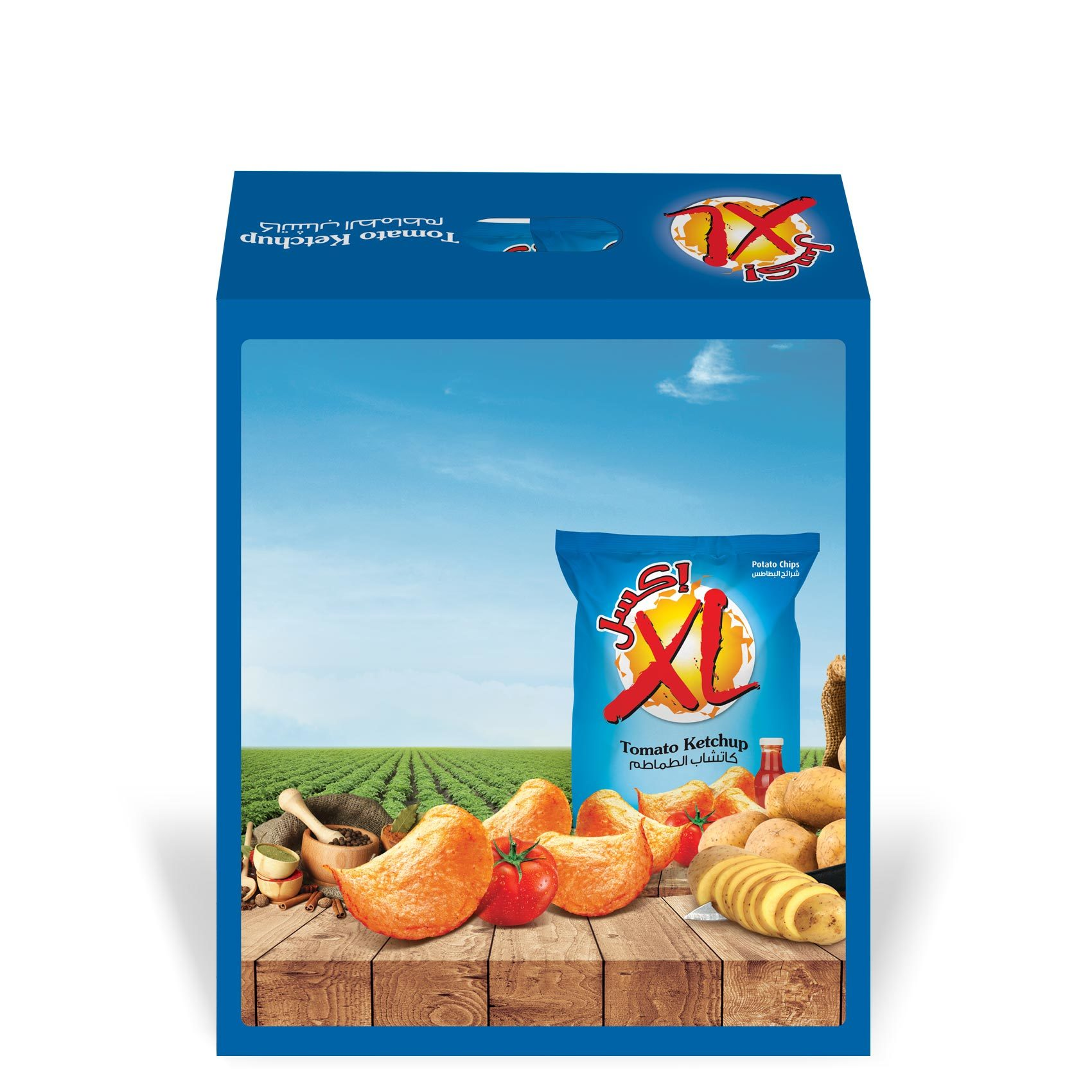 XL CHIPS KETCHUP DUPLEX 26GX14