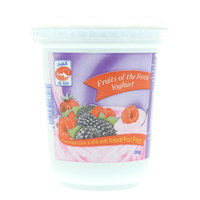 Al Ain Fruits of the Forest Yoghurt 380g