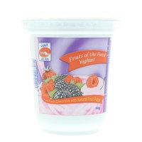 Al Ain Fruits of the Forest Yoghurt 380g