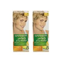Garnier Color Hair Blonde Light Gray No.9.1 2 Pieces