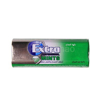 Extra Gum Professional Spearmint 20GR