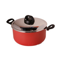 Newflon Cooking Pot 24 Cm