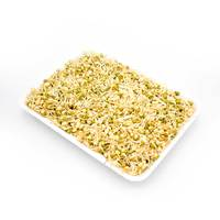 Beans sprout pack 300 g