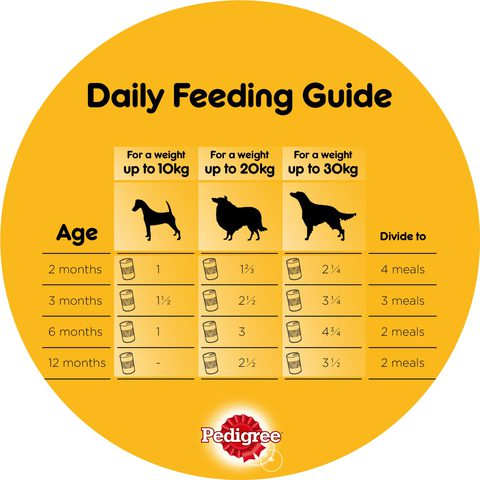 Pedigree-Beef-Chunks-in-Gravy-Dog-Food-400g