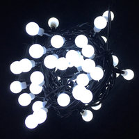 Indoor Hv Berry Light Chain 60W Led 2,95M Steady N22
