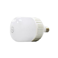 TCL LED Ultra Bulb Daylight E27 25W