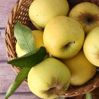 Organic Golden Apples 4 Pieces