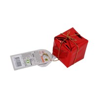 Christmas Gift Parcel Red