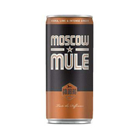 Goldberg Moscow Mule Premix Vodka Lime And Intense Ginger 33CL