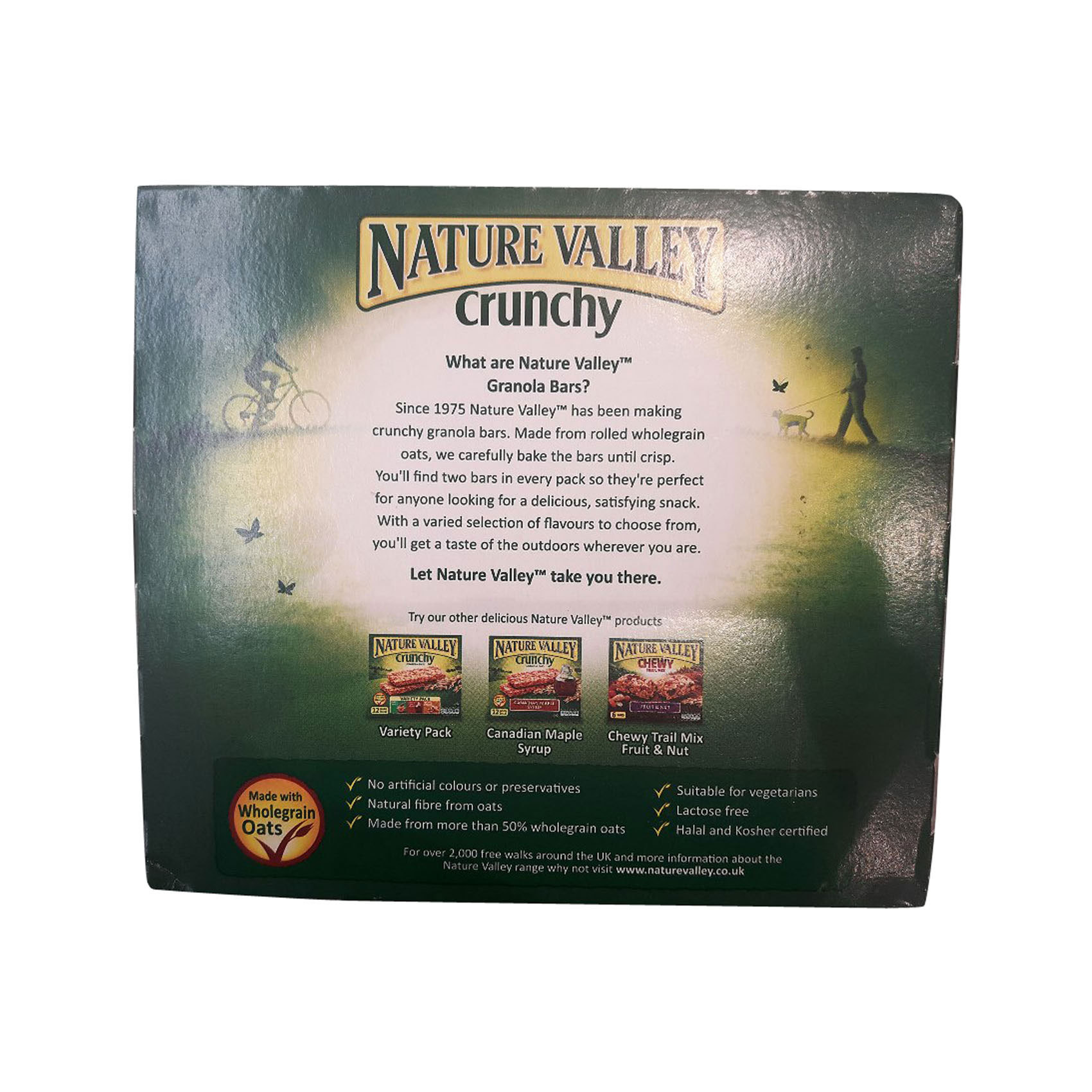 NATURE VALLEY BAR OATS&HONEY 42GX6